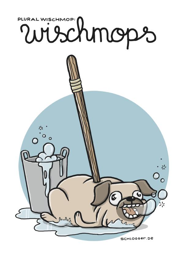 Plural Wischmop(p)