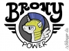 brony-power-shirt